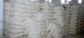 الشركة العامة لتجارة وتصنيع الحبوب فرع النجف الأشرف توزع مادة الطحين لأكثر من 2000 عائلة مهجرة