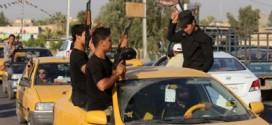 الجباية والزكاة .. مسميات داعشية لجني الأموال في الموصل