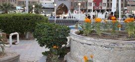 بلدية النجف الأشرف تنجز تثييل وزراعة حديقة ساحة الميدان العامة