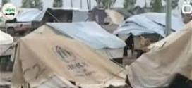 العيساوي : الأمم المتحدة قررت تزويد النازحين بـ1700 خيمة في النجف الأشرف